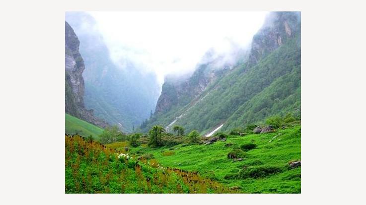 Himalayan Nature Park
