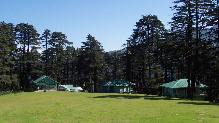 Patnitop- High and Tranquilizing!