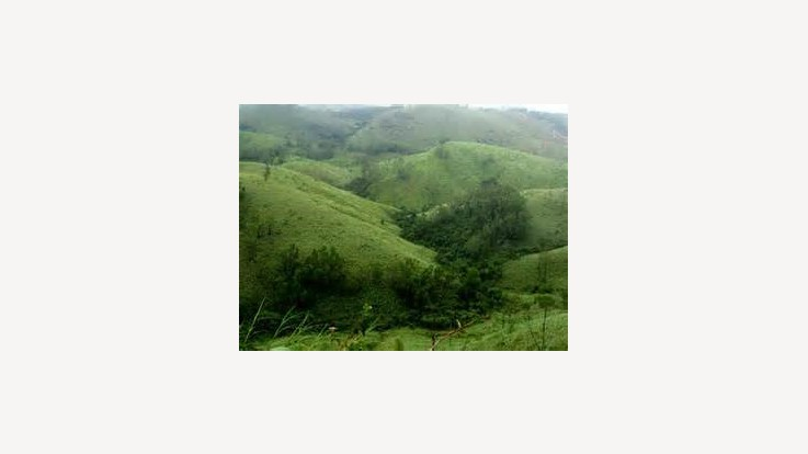 Vagamon- a treat to the eyes!
