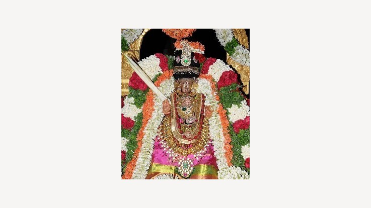Lower Ahobilam Temple Idol