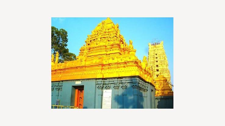 Ksheera Ramalingeswara Swamy Temple, Palakollu, Andhra Pradesh