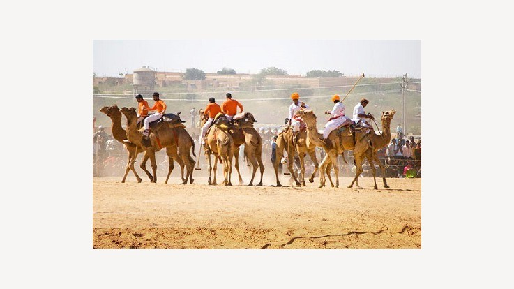 Gogamadi Fair