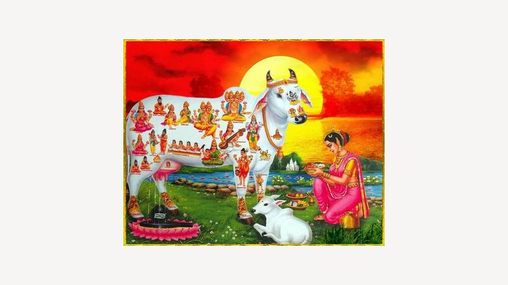 Significance of Gau Puja