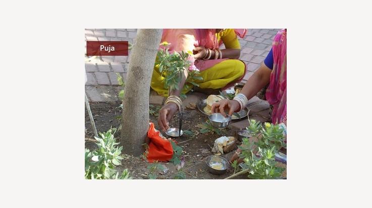 Sheetla Saptmi Pujan